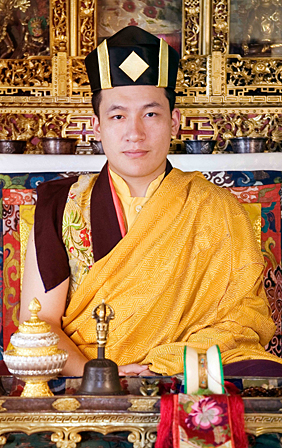 HH the 17th Karmapa Trinley Thaye Dorje